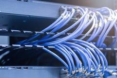 Netwerkkabels in netwerkschakelaars die worden verbonden royalty-vrije stock foto
