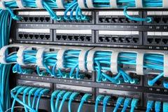 Netwerkpaneel, schakelaar en Internet-kabel in gegevenscentrum Zwarte schakelaar en blauwe ethernetkabels, het Concept van het Ge stock foto's