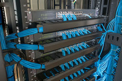 Netwerkschakelaar en ethernet kabels in rekkabinet royalty-vrije stock afbeelding