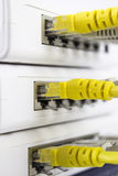 Netwerkserver Stock Fotografie
