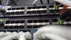 Netwerkstapel Netwerkactiviteit op schakelaar Aanwijzing van verrichting van de netwerkapparatuur Concept 3 stock footage