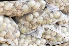 Netwerkzakken van Spaanse uien stock afbeeldingen