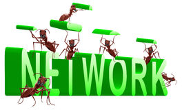 Network building connection. Ants building 3D word network royalty free illustration