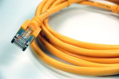 Network Cable. Yellow RJ45 Network Cable on white background Stock Photos