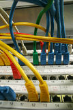 Network cable Stock Images