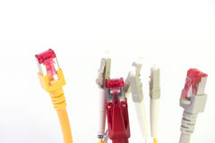 Network cable Royalty Free Stock Images