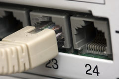 Network cable connected to a switch Stock Photos