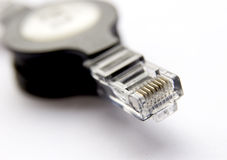Network cable with connector. Single network cable with connector on white background Stock Images
