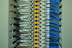 Network cable in control panel Stock Photography