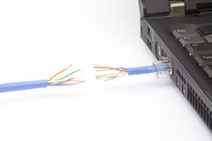Network cable cut off Stock Images