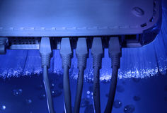 Network cable and hub Stock Images