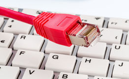 Network cable on keyboard Royalty Free Stock Photography