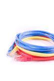 Network cable - patch-cord Stock Photo
