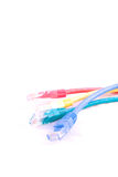 Network cable - patch-cord Royalty Free Stock Photo
