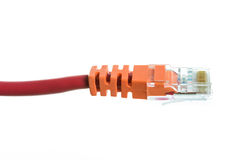 Network cable with RJ45 isolate Royalty Free Stock Photos