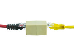 Network cable with RJ45 isolate Royalty Free Stock Images