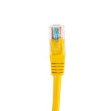 Network cable with RJ45 isolate on white background Royalty Free Stock Photos
