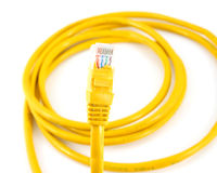 Network cable with RJ45 isolate on white background Stock Image