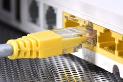 Network cable and router closeup Royalty Free Stock Image