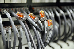 Network cables. And servers in a technology data center Royalty Free Stock Photography
