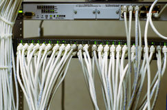 Network cables Royalty Free Stock Photo