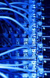 Network cables (blue tone) Stock Photography