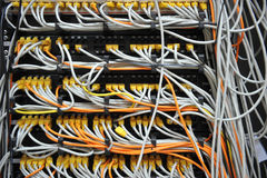 Network cables Stock Photos