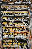 Network cables Royalty Free Stock Image