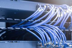network cables connected in network switches royalty free stock photo