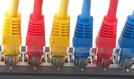 Network cables connected to router Stock Image