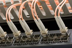 Network cables connected to a switch Stock Photography