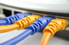 Network cables connected to switch Stock Photos