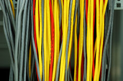 Network cables in datacenter Stock Image