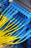 Network cables and hub Royalty Free Stock Image