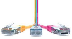 Network cables. On white background Stock Photography