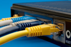 Network cables plugged into a router Royalty Free Stock Photo
