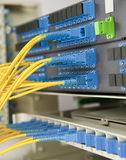 Network cables and servers Stock Photos