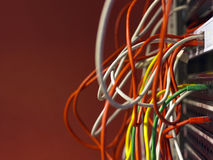 Network cables and servers Royalty Free Stock Images