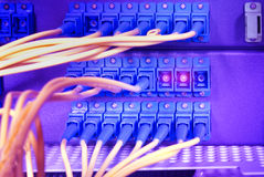 Network cables and servers in a technology data center Royalty Free Stock Image