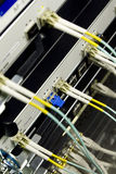 Network cables and servers in a technology media d Royalty Free Stock Photos