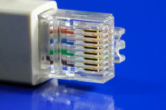 Network connection plug Stock Images