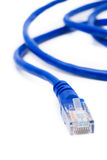 Network connection plug RJ-45 Stock Image