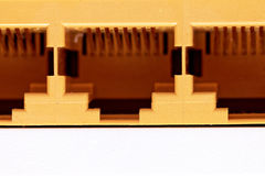 Network connection plug RJ-45. Macro. Isolated. Royalty Free Stock Images