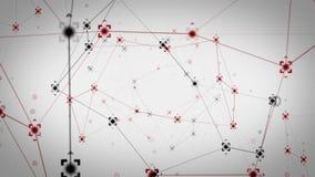Network Data Points White stock video