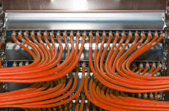 Network distributor in a data center for cloud services.  Royalty Free Stock Photo