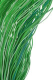 Network of green wires Royalty Free Stock Photos