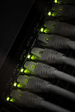 Network hub with green led lights Stock Photos