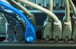 Network hub with lot of connected wires Stock Image