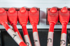 Network hub and patch cables Royalty Free Stock Images