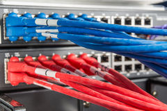 Network hub and patch cables Royalty Free Stock Image